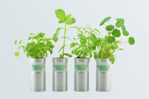 Promotional Seeds - Living Pouch