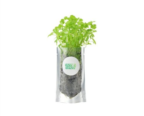 Living Pouch - Eco-friendly Promotional Seeds