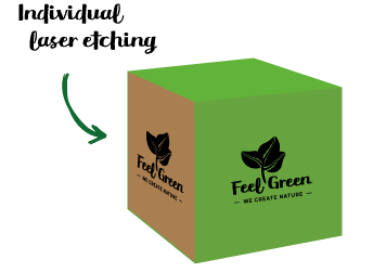 Promotional Seeds - Customised Eco Cube