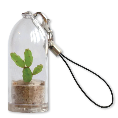 cactus keyrings eco-friendly sustainable promo products