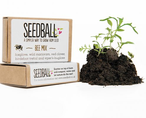 SeedBall Bee Mix - Printed Promo Seeds
