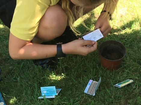 Seeds for Schools - Children Planting