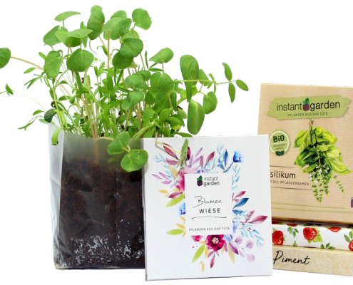 Promotional Instant Garden Kit Pack Shot and Plant