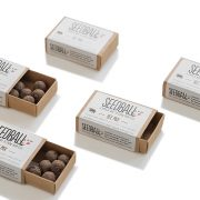 seedballs to sustain bees
