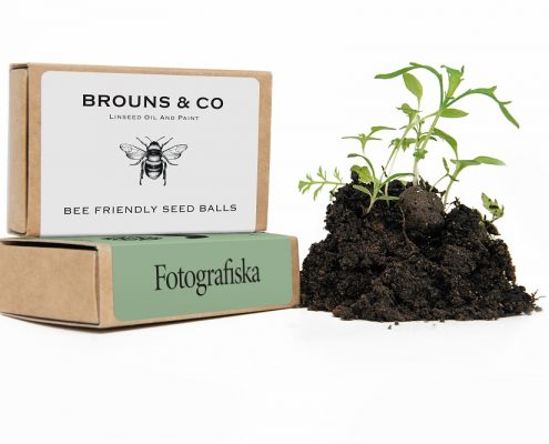 Seedball Matchboxs with Growing Plants