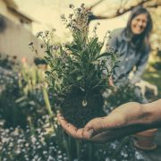 Gardening Improves Mental Health